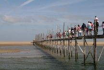 Texel / Texel heeft een veelzijdig landschap dat mooi is in alle seizoenen.