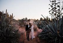 Cactus Love Weddings