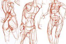 Anatomie Artistique