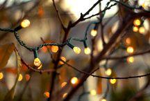 Earthy Gold (Autumn)