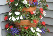 kert virágok