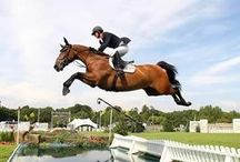 Equestrian: Show Jumping / by @Jurisprude