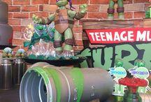ninja turtles party