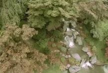 "Moments of ""Ma"" - Videos of Japanese gardens in USA & Canada / ""Ma"" is a Japanese word that roughly translates to ""negative space."" In a Japanese garden, ""ma"" can be the consciousness of place that comes when we pause and just let the garden speak for itself, as it does in these videos."