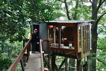 Tree House / For real. I'm gonna build a tree house over my creek.  / by Flinn Hill Manor