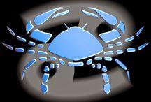 Horoscop Rac iulie 2014