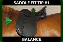 Saddle Fitting - Schleese's 9 Point Checklist / 9 Point Checklist to ensure optimal fit of your saddle to your horse to prevent long-term damage and to allow your horse to move optimally and pain free!