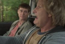 Dumb and Dumber To / Just when we thought they couldn't be any dumber, after a long 20 years, the dimwits are back in the hilarious sequel, Dumb and Dumber To. They need a new kidney so they set out to find one of their long lost children in hopes of gaining one. #DumbTo