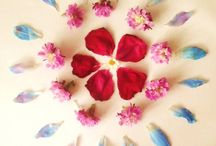 Mandalas (my work)