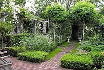 back yard / garden architecture and ideas