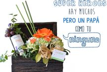 Día Del Padre 2014 - Floristería Celiflor / Dila a papá #NoHayNadieComoTú y obséquiale un arreglo #Celiflor www.floristericeliflor.com