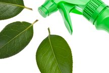 NATURE & ENERGY CONSERVATION / All about natural products, energy conservation for our homes