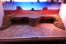 Bearded Dragon platform