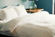 Master Bedroom Ideas  / by Jessica Jarvi-Bergman