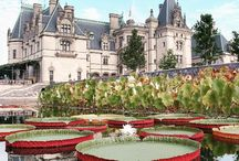 Biltmore's Italian Garden / Formal in design, this elegant garden is just steps away from Biltmore House. With three symmetrical pools, grassy panels, Italian sculpture, and plenty of places to sit, it's the perfect place to relax on a nice day.