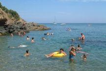 Costa Brava / Costa Brava is de bekendste regio van Spanje. Campings aan de Costa Brava vind je op CampingScanner.nl