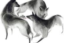 illustration / by ferme à papier by cat seto