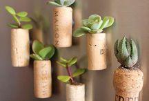 Pon un jardín en tu salón / Decoración con plantas.