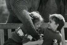Elephants that make me happy