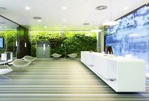 Reception Inspiration / Desks and spaces