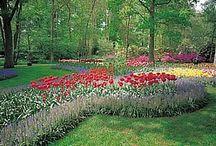 For the Organic Garden
