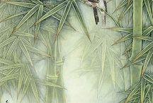 Asia birds painting