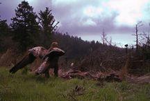 Customer Photos / Customer photos from Trail Cameras!