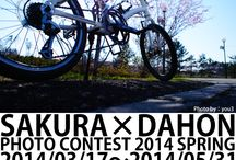 SAKURA×DAHON PHOTO CONTEST 2014 SPRING / 桜のある風景にDAHONのバイクが写っている写真のコンテスト http://enjoytheride.blog17.fc2.com/blog-entry-1108.html