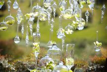 Wedding Ideas / by Stacy Thomas