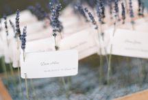 Escord cards wedding
