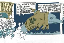 Dolphin Cartoons