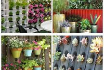 Plants in Containers/Walls