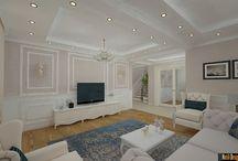 Design interior case clasice