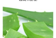 Medicinal uses of Forever Aloe Vera Gel