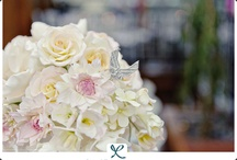 The Today Show - Manhattan, NY  / Event Design by Colin Cowie  Photography by Robert & Kathleen Trenske