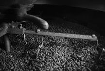 Amedei - Cocoa Origins / Amedei Tuscany