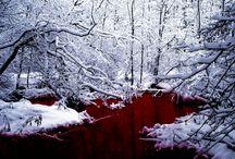 "Winter Deer: ""A Dreaming"" / Inspiration Board"
