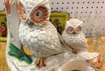 Owls / Retro owls. Real owls. Owls that are supposed to be retro.  / by Melissa Wiese