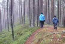 Suomussalmi @ late autumn / Walking with the family at Jumalissärkät, Suomussalmi.