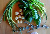 Salse e Salsine / Condimenti, dip e varie cose golose