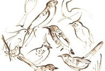 Drawing - Waverley Woollahra Art School / A collection of our drawing courses and tutor drawings
