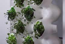 Sustainability / by eVolo