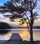 Shelley's Board's - Lake Placid