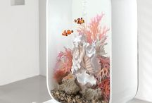 Your fantasy for a good #aquarium