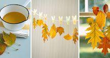 Fall - haust aktiviteter
