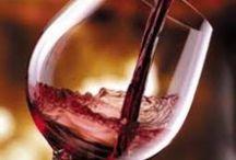 vino & cantine / in provincia di asti