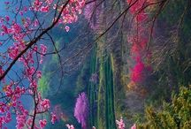 krásnodivná příroda