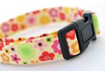 Pets - Collars / Collars and accessories for our little friends!