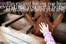 Horse quotes / I agree and can relate to all if these quotes