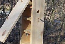 madárodu / birdhouse